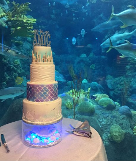 By the aquarium