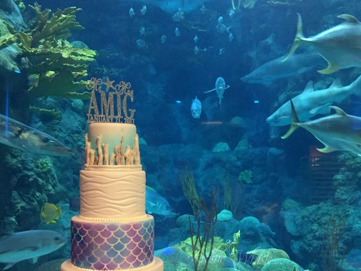 Tmx 1516737638 856c4a20fff574c3 1516737635 04b069ebb534226b 1516737518958 35 Mermaid Scales An Saint Petersburg, Florida wedding cake