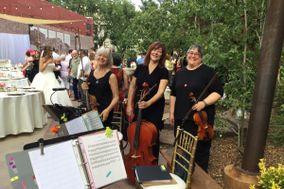 Allegro Quartet