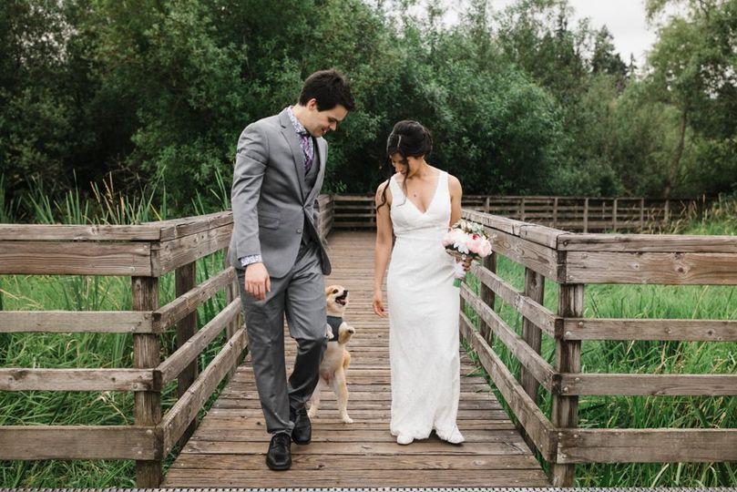 Woof!  Wedding Dogs Rock!
