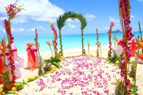 Sweet Hawaii Wedding