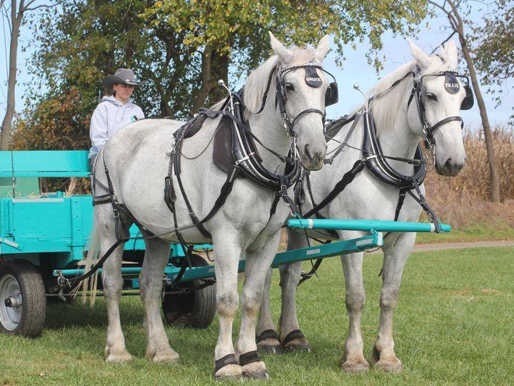 Tmx 1393460758434 Img328 Bath wedding transportation