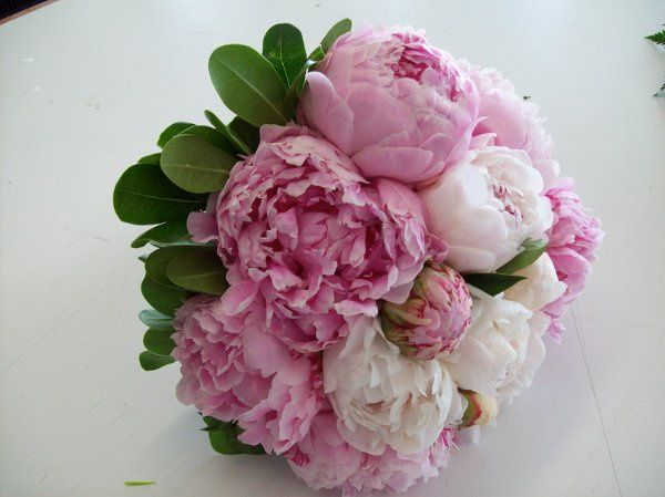 Tmx 1331047978493 1000550 Grand Rapids wedding florist
