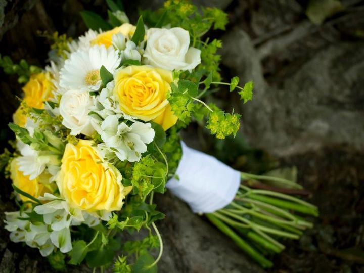 Tmx 1370373702350 527441664155286822278831359n Grand Rapids wedding florist