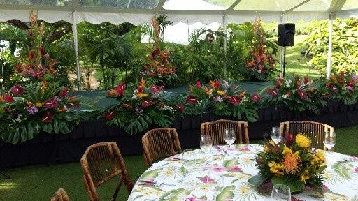 "EVENT SETUP- BACK STAGE BACK DROP- AR4CA & LADY PALM PLANTS, 3- LARGE 6"" TROPICAL ARRANGEMENTS,..."