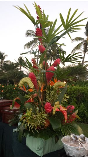 BUFFET TREATMENT- RED GINGERS, HELECONIAS, ANTHURIUMS, SONG OF INDIA, LADY PALM STOCKS