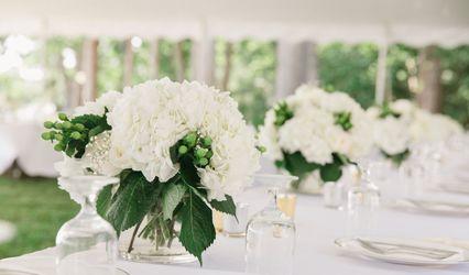 Wedding Rentals NC