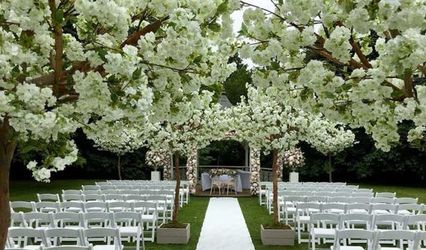Tropical Chic Weddings & Events