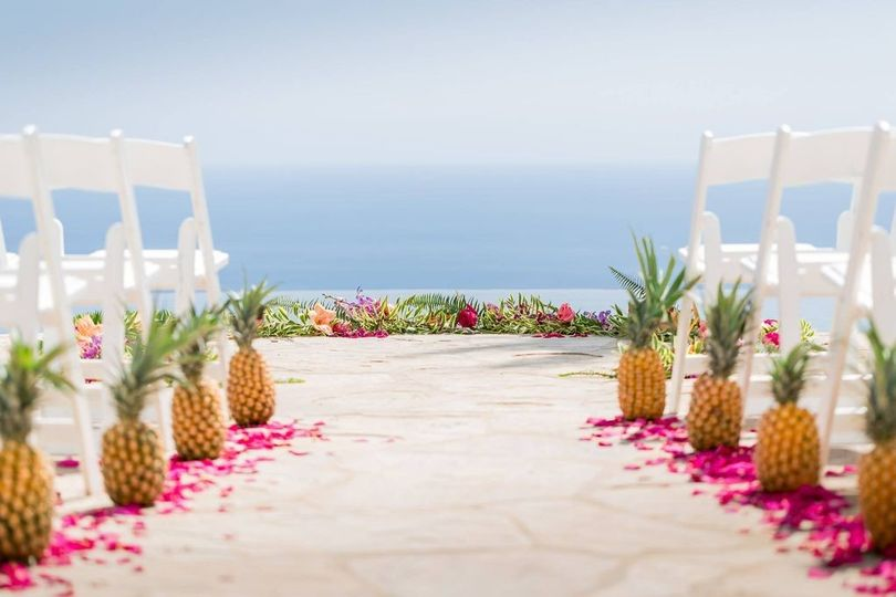 Pineapple view