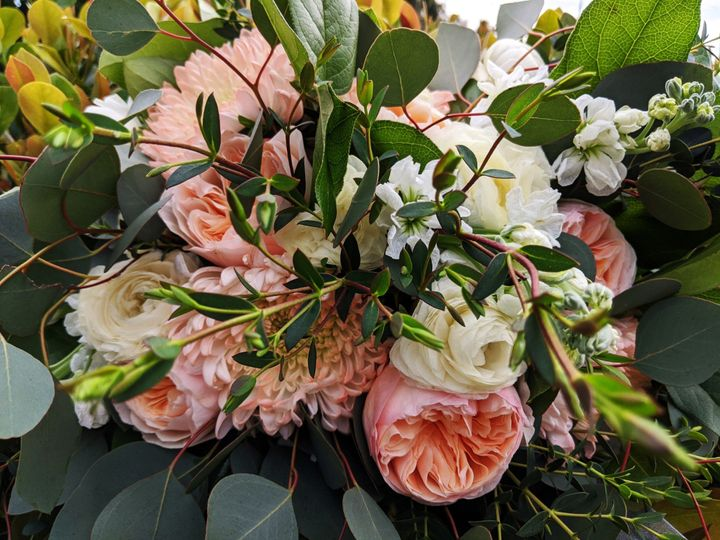 Tmx Broccolowedding1 51 102147 158385466384179 Naples, FL wedding florist