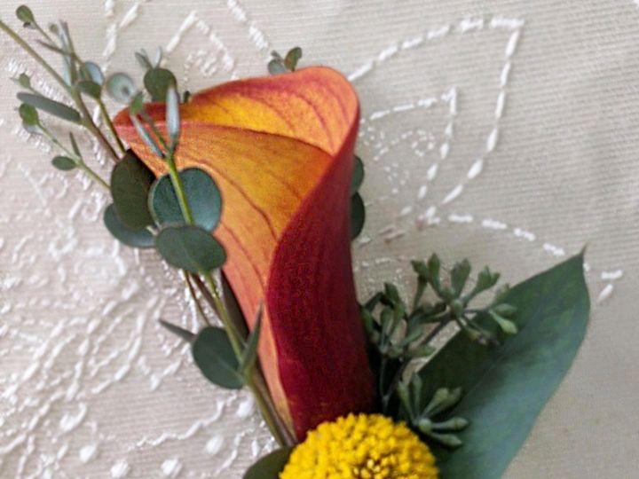 Tmx Diana Ruiz Ferro4 51 102147 160337278453449 Naples, FL wedding florist