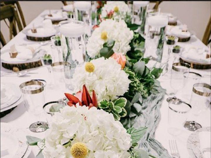 Tmx Diana Ruiz Ferro9 51 102147 160337290577200 Naples, FL wedding florist