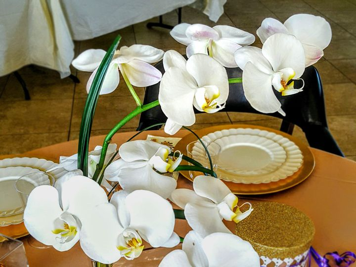 Tmx Orchidcubecenterpiece 51 102147 161376685214168 Naples, FL wedding florist
