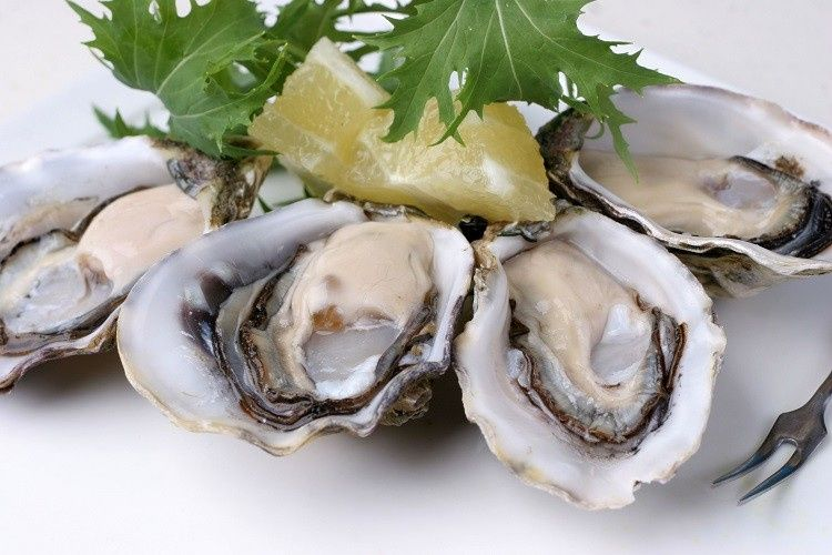 pacific oysters gettyimages 157187298 589c98b93df78c47580d92f3 51 1974147 159252046698503
