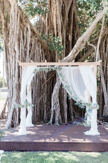 Ceremony space in front of our beautiful ficus tree.