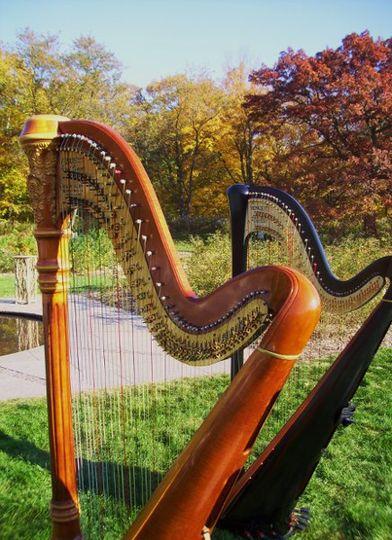 Minnesota Landscape Arboretum ~ Minneapolis Wedding Harpist