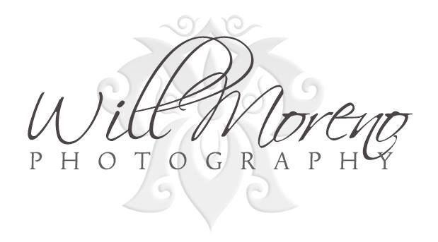0e743c7246c027f1 Will Moreno Logo