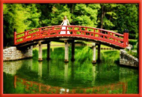 Bride on bridge in Japanese garden