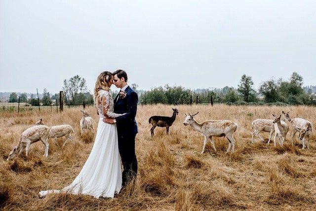 Tmx Sofiyak 4 51 784247 1567212950 Redmond, WA wedding dress