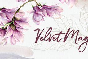Velvet Magnolias