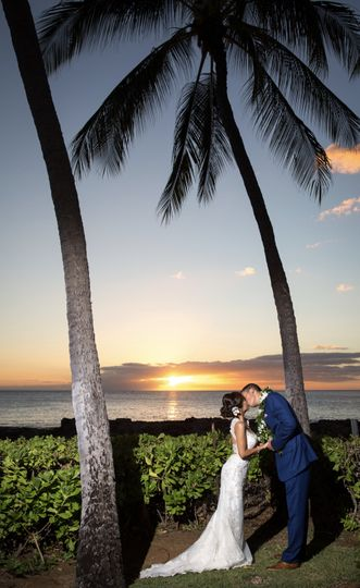 Palm trees in paradise - Newma Photography