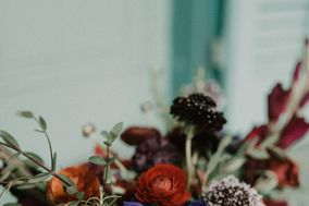 Hummingbird Floral Studio