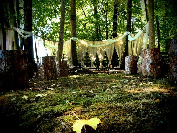 Burlap Swags and re-purposed tree stumps made an enchanted ceremony site