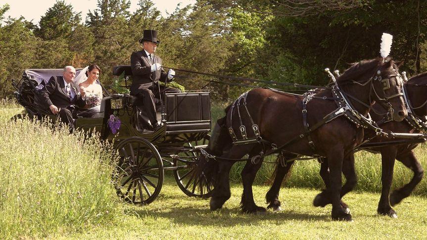 Farm Wedding 2018