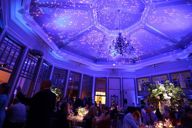 Starry gobo projection with blue accent and uplighting at The Daniel Stowe Botanical Gardens