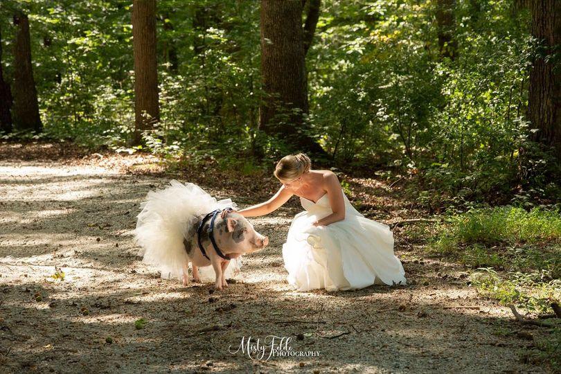 Outdoor shot | Misty Felde Photography
