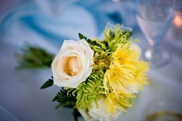 Tmx 1265140182768 Jessgrant1037 Denver wedding planner
