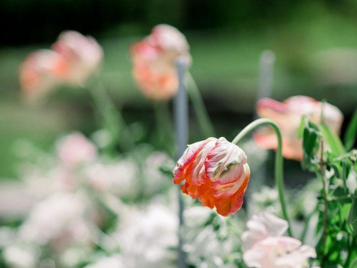 Tmx Kate Preftakes Nm 39 51 90547 1565631500 Littleton, NH wedding florist