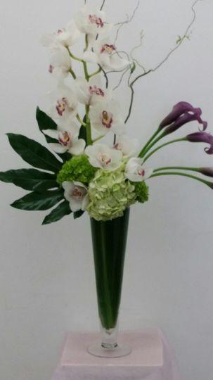 sterling blooms 14