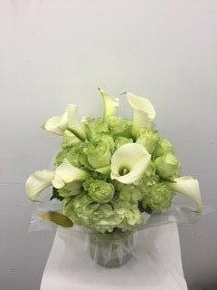 d12dc3865189eeec 1458830562029 sterling blooms 1
