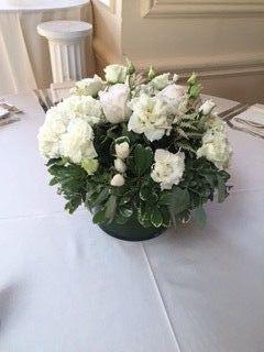 c021b47b771437c4 1458830606146 sterling blooms 7