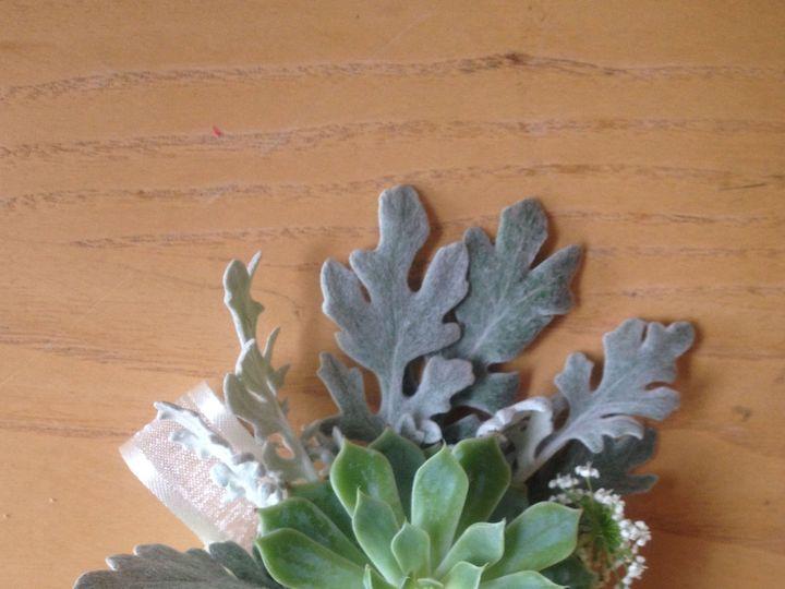 Tmx 1444928439559 Succulent Boutonniere Yonkers, NY wedding florist