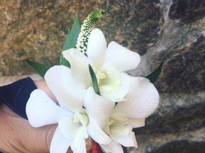 Tmx 1508350824737 Evelisa Floral Designorchid Boutonniere Yonkers, NY wedding florist
