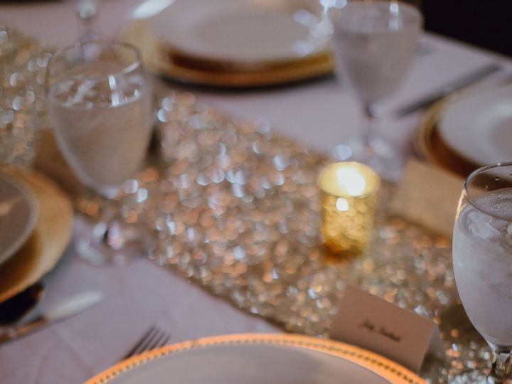 Tmx Silver Fox Wedding Photography By Megan Saul Photography Details8of38 51 1884547 158924109417928 Geneva, IL wedding planner