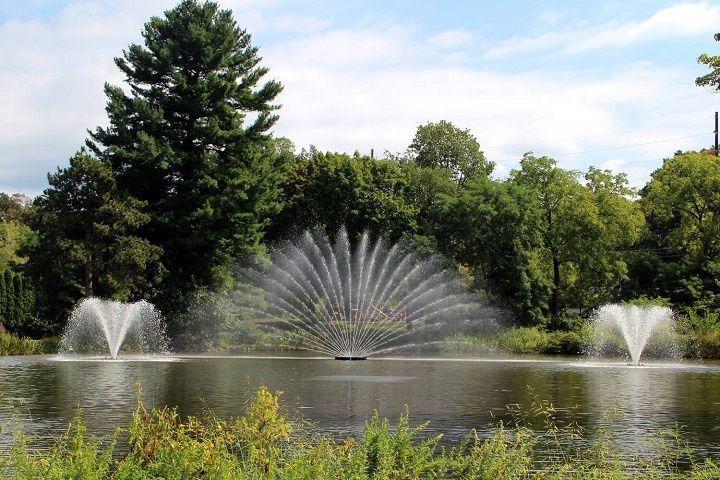 Dancing Water Display