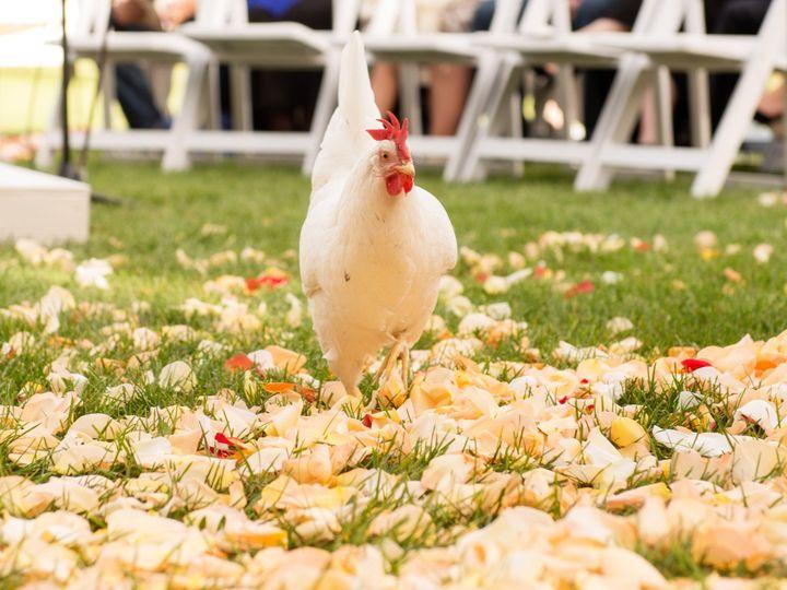 Tmx 1437583990873 Roys Barn Montana Bozeman The Knot Wedding Photogr Bozeman wedding photography