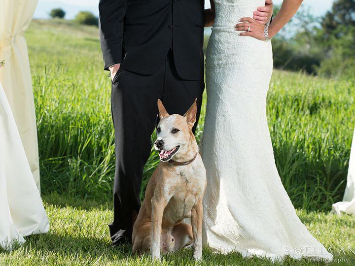 Tmx 1437584236078 Destinationweddingphotographersmontana Bozeman wedding photography