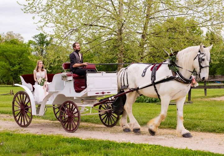 Carriage Arrival