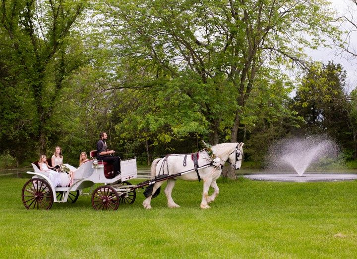 Carriage to the Lakeside Cerem