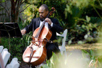 Tmx 1271996681276 Cello1a Land O Lakes wedding dj