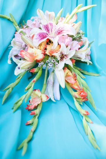 paula bouquet