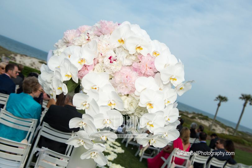 Wedding Flowers In Jacksonville Fl : Anything with plants flowers jacksonville