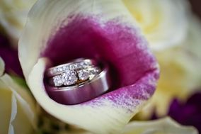 Brandi Blaha Photography, LLC