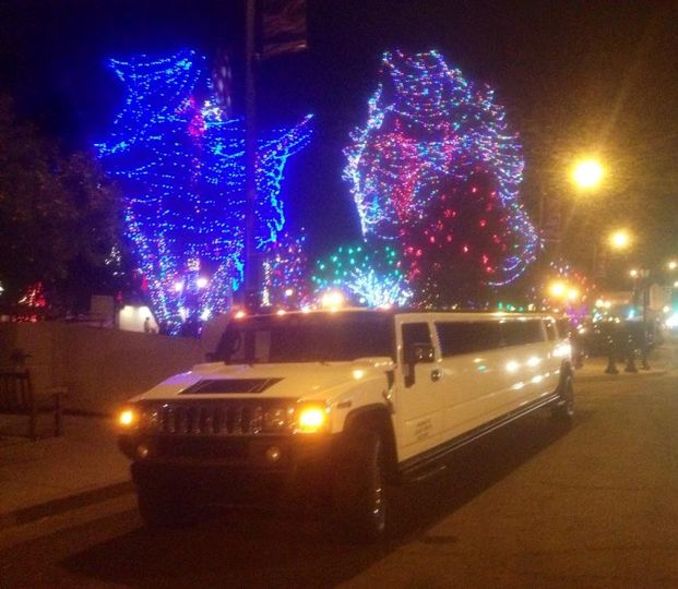 holiday lights hummer