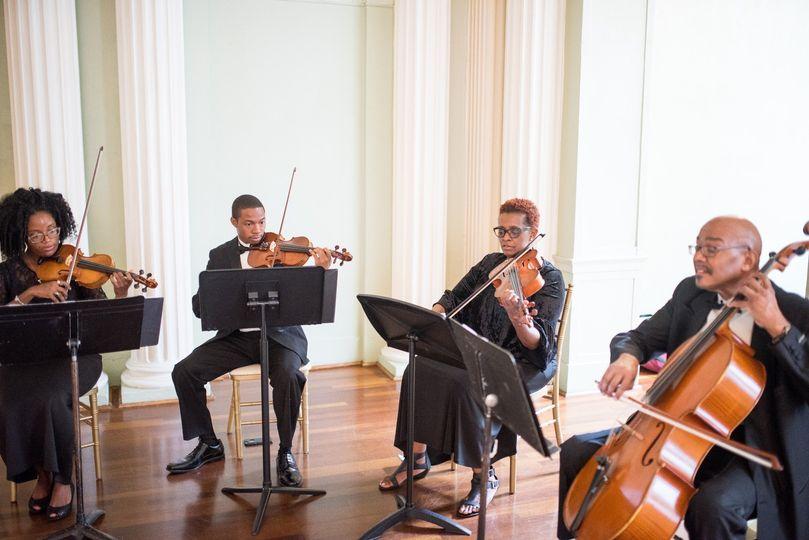 String quartet - professional musicians