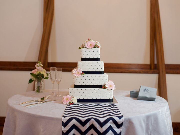 Tmx 1421731965526 Edible Artistry  2014 Glessner Photography 002 High Point wedding cake